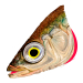 STICKLEBACK FOIL-XL
