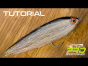 EASY TUBE BAITFISH