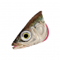 STICKLEBACK FOIL